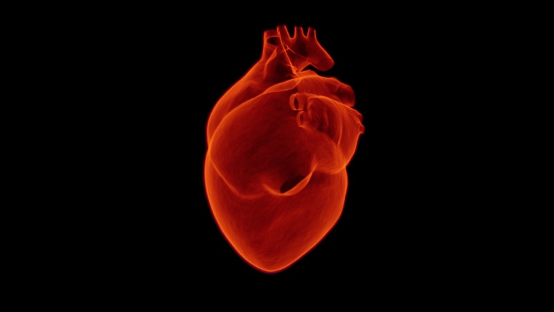 Miedo a sufrir un infarto por Ansiedad. Palpitaciones y taquicardias